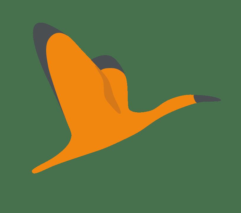 Illustration Ibis logo Authôt
