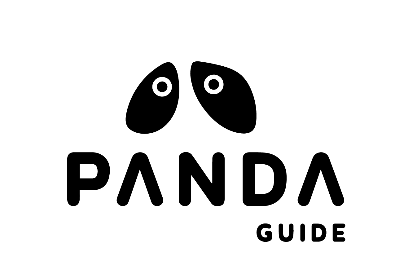 Panda for visually impaired people